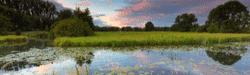 drenthe-meppel-landschaft-sonnenuntergang